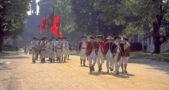 Colonial Williamsburg Revolutionary War