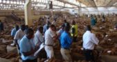 High rejection rate at auction floors