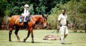 Eswatini: Big Game Parks